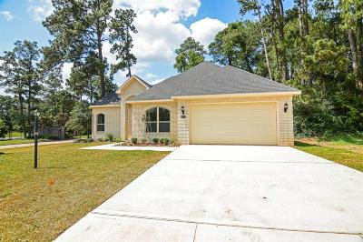 Single Family Home For Sale: 217 Wyndemere Drive