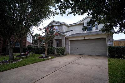 Katy Single Family Home For Sale: 6654 Stonefort Court