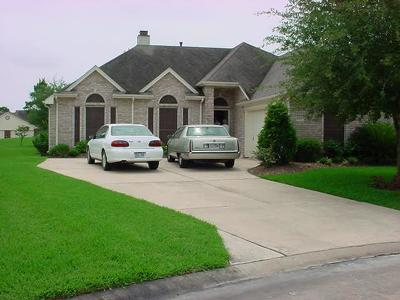 Pearland Single Family Home For Sale: 3310 Flower Field Lane
