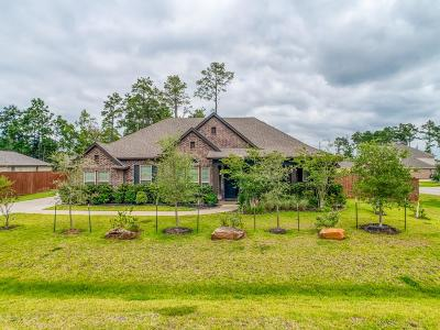 Magnolia Single Family Home For Sale: 12602 Henry Court