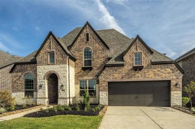 Sugar Land Single Family Home For Sale: 4203 Abigail