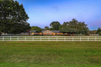Friendswood Single Family Home For Sale: 19 El Dorado Drive
