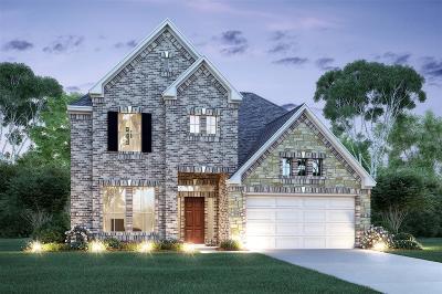 League City Single Family Home For Sale: 1637 Canchola Lane