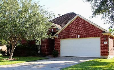 League City Single Family Home For Sale: 206 Green Cedar Drive