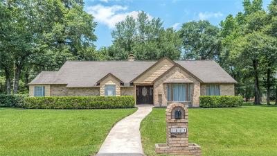 Galveston County, Harris County Single Family Home For Sale: 647 Cotter Drive