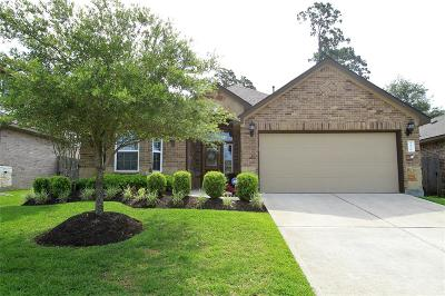 Porter Single Family Home For Sale: 24139 McKinzie Ridge Drive