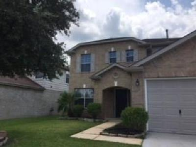 Houston Single Family Home For Sale: 338 Remington Green Court