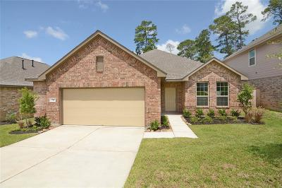 Conroe Single Family Home For Sale: 711 Red Elm Lane