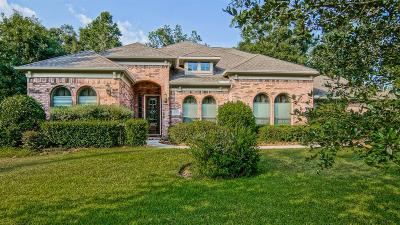 Conroe Single Family Home For Sale: 13257 Autumn Ash Drive