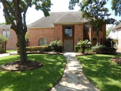 Houston Single Family Home For Sale: 3318 Chapel Bend Drive