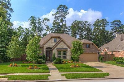 Spring Single Family Home For Sale: 2230 Spring Lake Park Lane