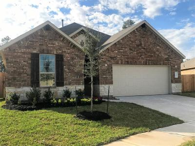 Spring Single Family Home For Sale: 24407 Hollow Gate Meadow Court