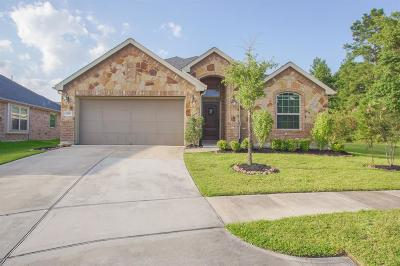 Spring Single Family Home For Sale: 3791 Paladera Place Court