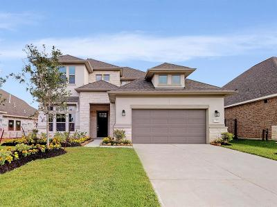 Tomball Single Family Home For Sale: 73 Botanical Vista Drive