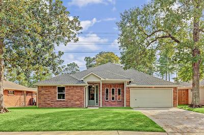 Houston Single Family Home For Sale: 6411 Cindy Lane