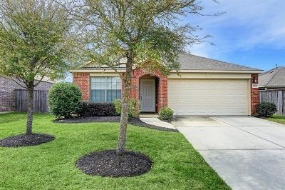 Galveston County, Harris County Single Family Home For Sale: 14719 Fall Creek Preserve Drive