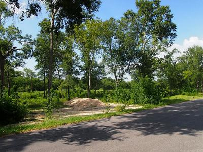 Pearland Residential Lots & Land For Sale: Bishopton