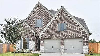 Fort Bend County Single Family Home For Sale: 3002 Hickory Springs Lane