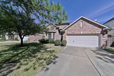 Katy Single Family Home For Sale: 5103 Shadow Breeze Lane