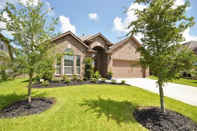 Pearland Single Family Home For Sale: 4002 Oak Grove Lane