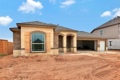 Texas City Single Family Home For Sale: 12509 Grayton Drive