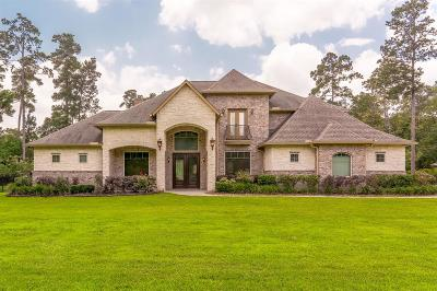 Spring Single Family Home For Sale: 28102 Whispering Maple Way