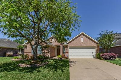 Houston Single Family Home For Sale: 8906 Green Ray Drive