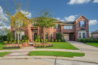 Single Family Home For Sale: 18807 Cove Bend Lane