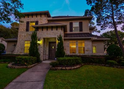 Houston Single Family Home For Sale: 14131 Saint Marys Lane