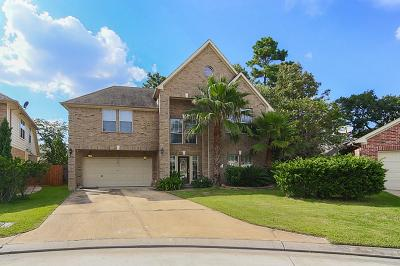 Conroe Single Family Home For Sale: 2 Lulach