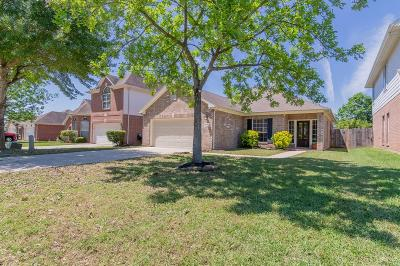 Conroe Single Family Home For Sale: 7807 Nikis Crossing