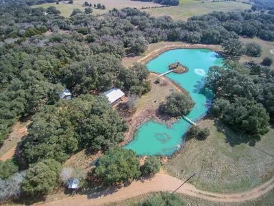 Cat Spring Farm & Ranch For Sale: 13153 Frantz Road