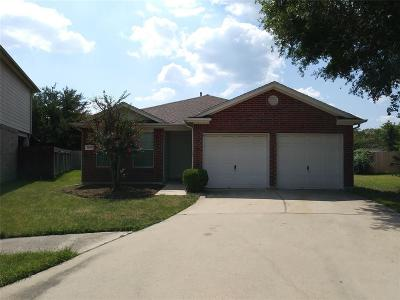 Tomball Single Family Home For Sale: 19215 Talcott Way Drive