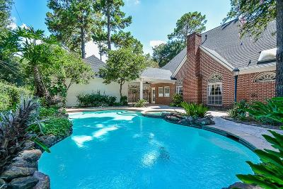 Cypress Single Family Home For Sale: 13114 Bristol Berry Drive