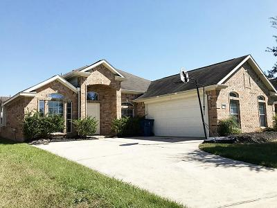 Tomball Single Family Home For Sale: 22926 Bank Shade Court