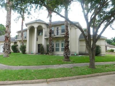 Houston Single Family Home For Sale: 8002 Harbor Point Drive