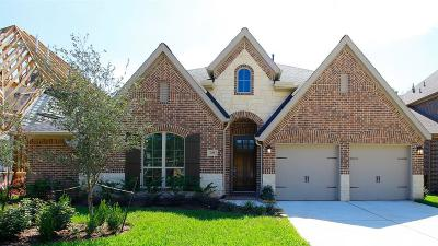 Single Family Home For Sale: 129 Kit Fox Court