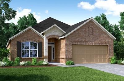 Rosenberg Single Family Home For Sale: 9003 Japonica Drive