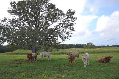 Fayette County Farm & Ranch For Sale: 2270 Old Lockhart Rd