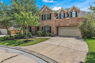 Houston Single Family Home For Sale: 6022 Shady Alcove Court