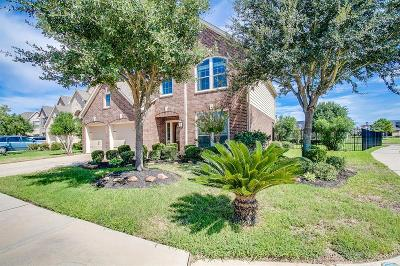 Single Family Home For Sale: 3902 Stormy Orchard Court