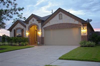 Cypress Single Family Home For Sale: 20118 Alyssa Meadows Lane