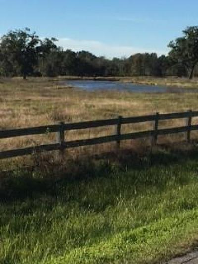 Brazoria Residential Lots & Land For Sale: County Road 309