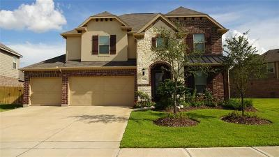 Tomball Single Family Home For Sale: 22331 Wenbury Drive