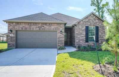 The Woodlands Single Family Home For Sale: 226 Galloway Court