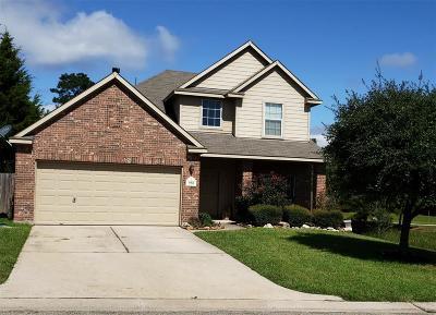 Conroe Single Family Home For Sale: 950 Oak Terrace Drive