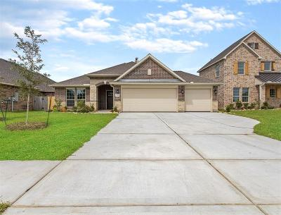 League City Single Family Home For Sale: 1316 Graham Trace Lane