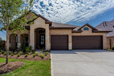 Katy Single Family Home For Sale: 2818 Acorn Way