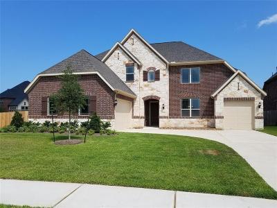 League City Single Family Home For Sale: 1521 Kaleta Pass Lane
