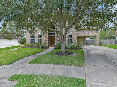 Sugar Land Single Family Home For Sale: 8603 Magnolia Forest Drive